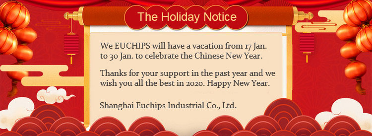 Euchips 2020 Annual Party 12